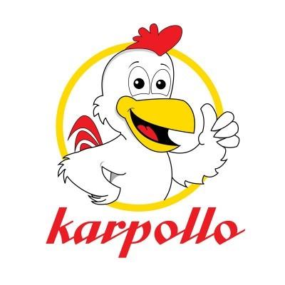 Karpollo Logo Design